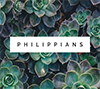 Philippians 3:12-15